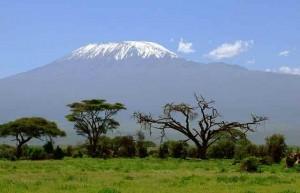 kilimanjaro-kenya-safari
